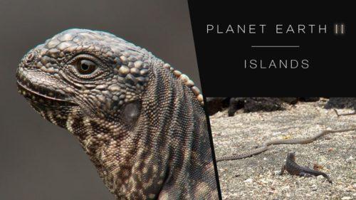 193: BBC America, Planet Earth II – Mike Gunton & The Tech Behind The Show